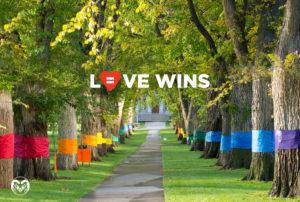 Love Wins image