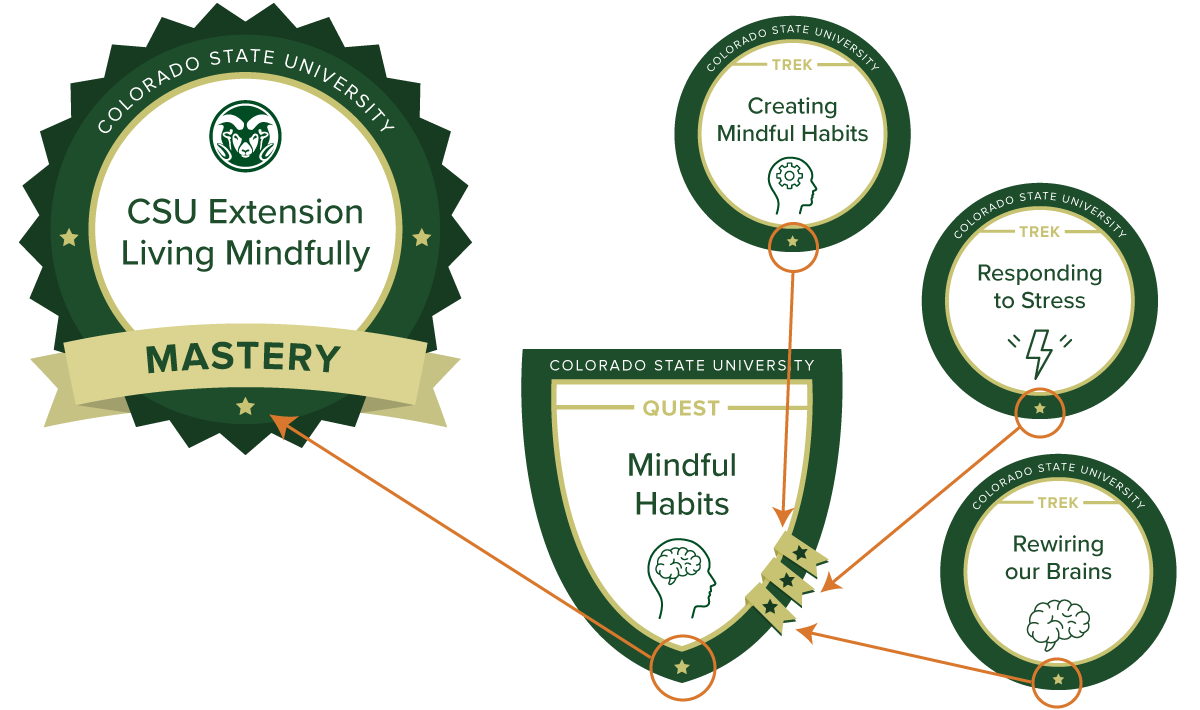 new mindfulness training available online for CSU students and staff