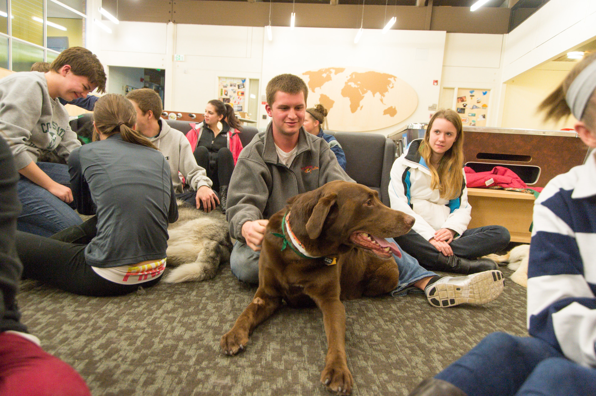 Students and dogs in Paramlee Hall