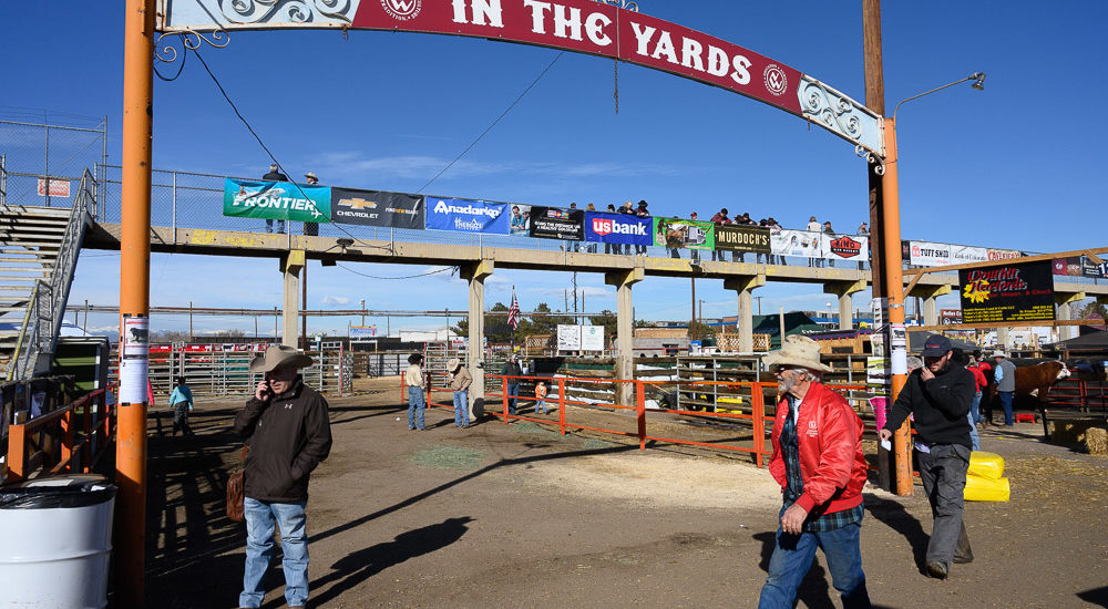 The stock yards at the 2019 National Western Stock Show,