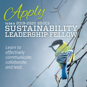 a call for researchers to apply for the Sustainability Leadership Fellows program