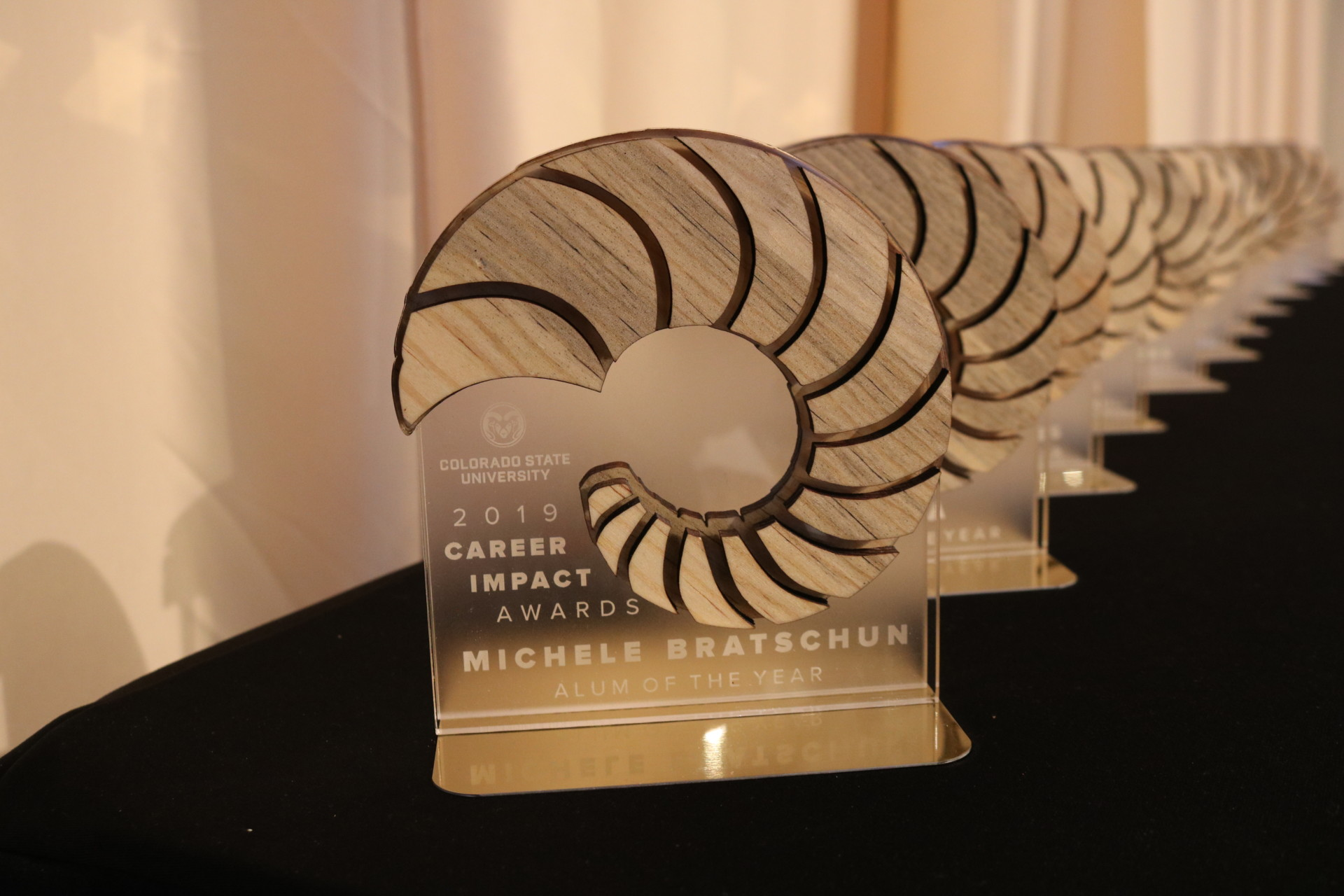 Photo of the Awards at the Career Center Awards