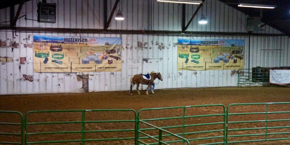 Volunteer walks horse around the indoor space at the CSU Temple Grandin Equine Center in north Denver.