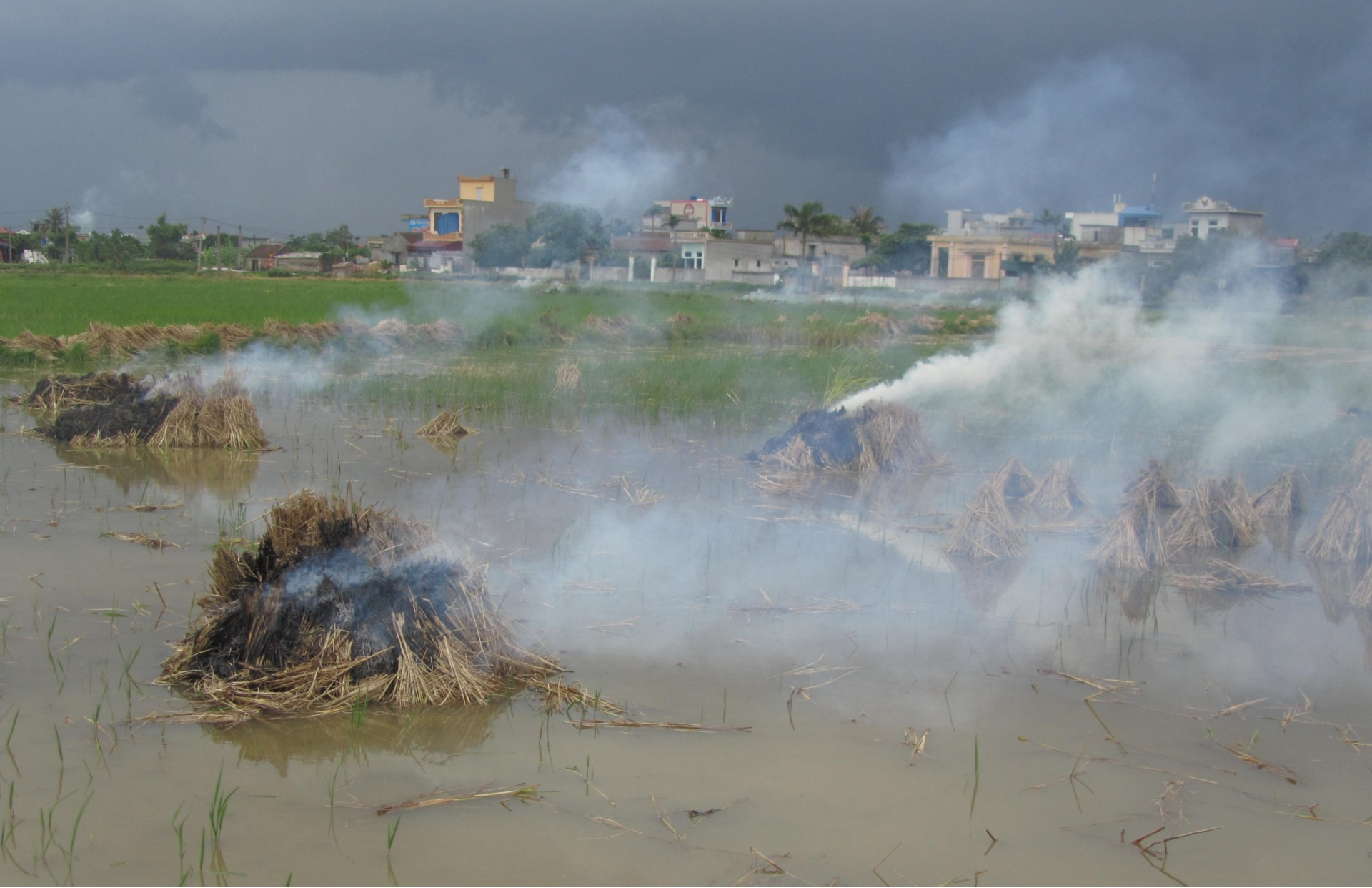 stacks of straw burning in the water in Vietnam
