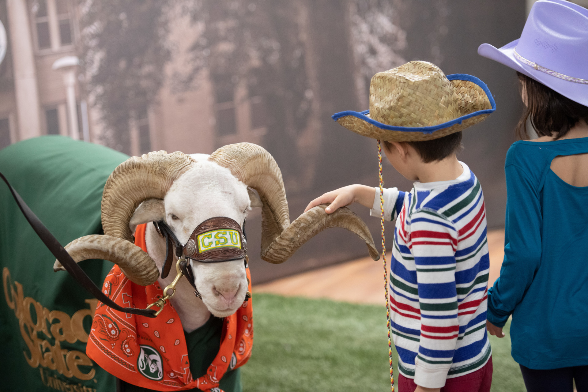 CAM the Ram and Stock Show visitors