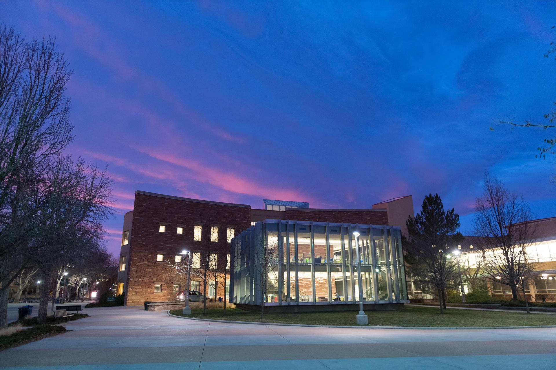 CSU Library