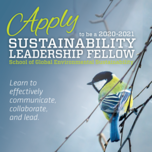 poster for the School of Global Environmental Sustainability's leadership fellows program
