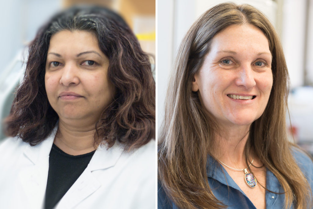 headshots of Rushika Perera, Sue VandeWoude, CSU scientists