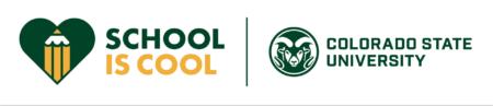 School is Cool 2020 mark