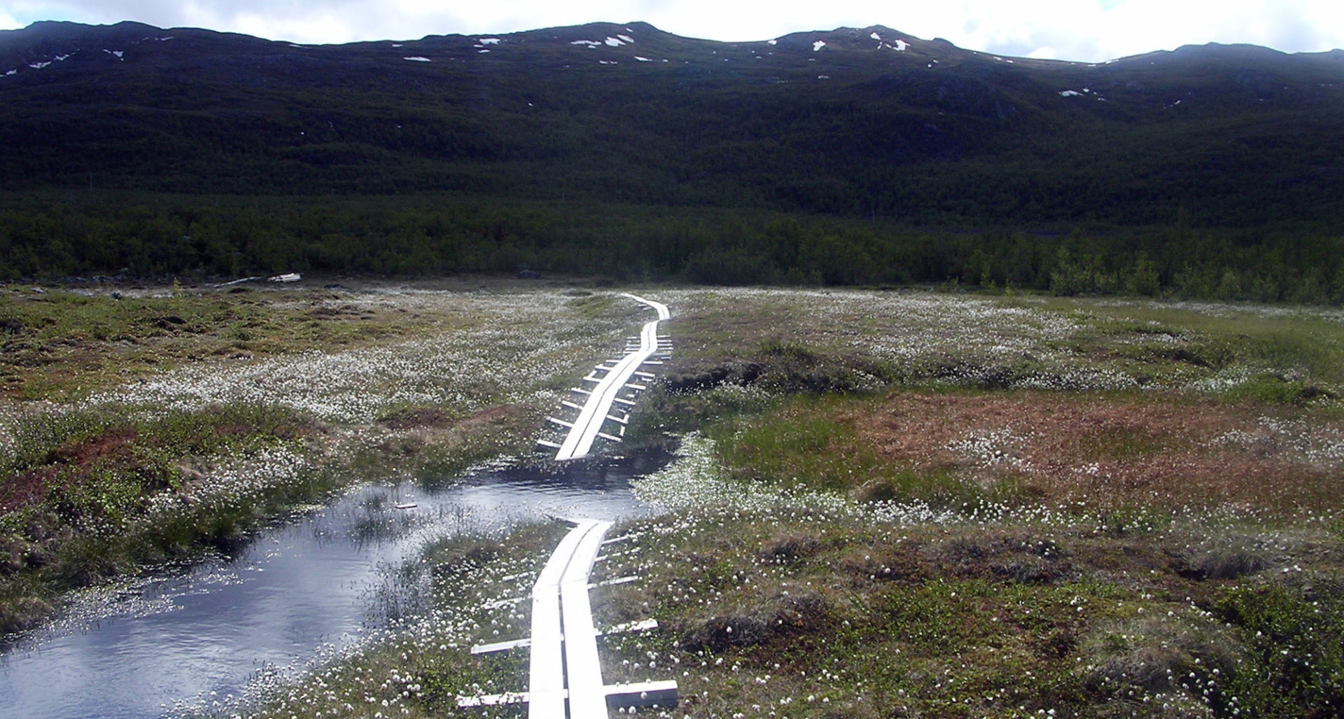 Bridge broken on thawed permafrost