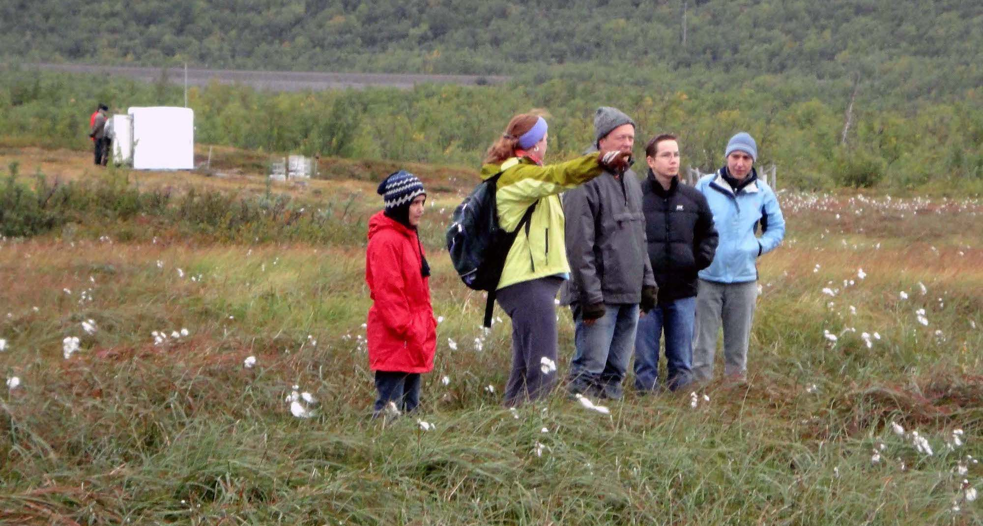Researchers at the permafrost site in Sweden