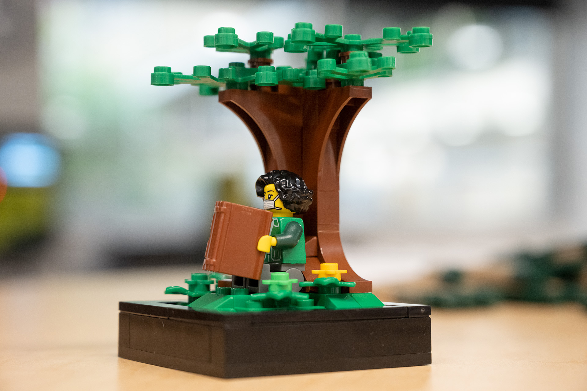 Historical Images In Lego