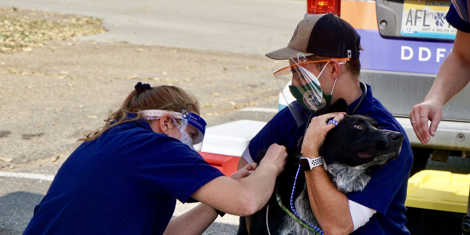 CSU D.V.M. student-volunteers administer vaccination to a dog at seventh annual CSU Spur Focus on Health Community Clinic in Denver on Oct. 3, 2020.