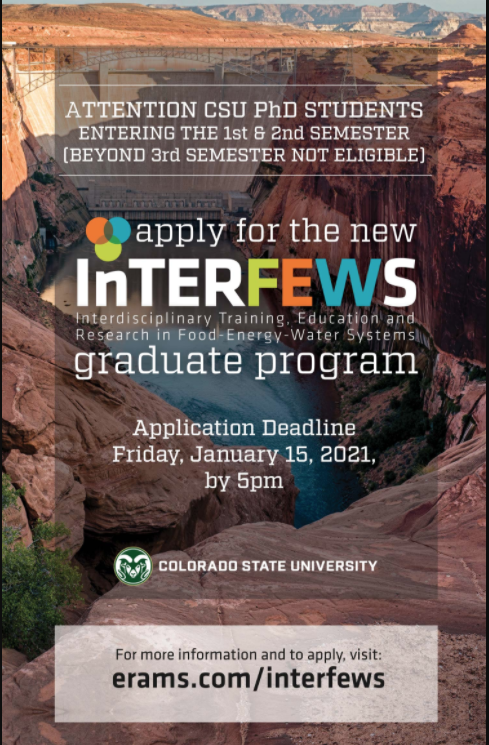 Call for applicaations poster InterFEWS