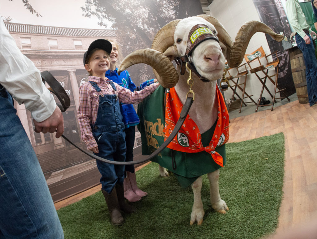A kid takes a picture with CAM the Ram at the National Western Stock Show