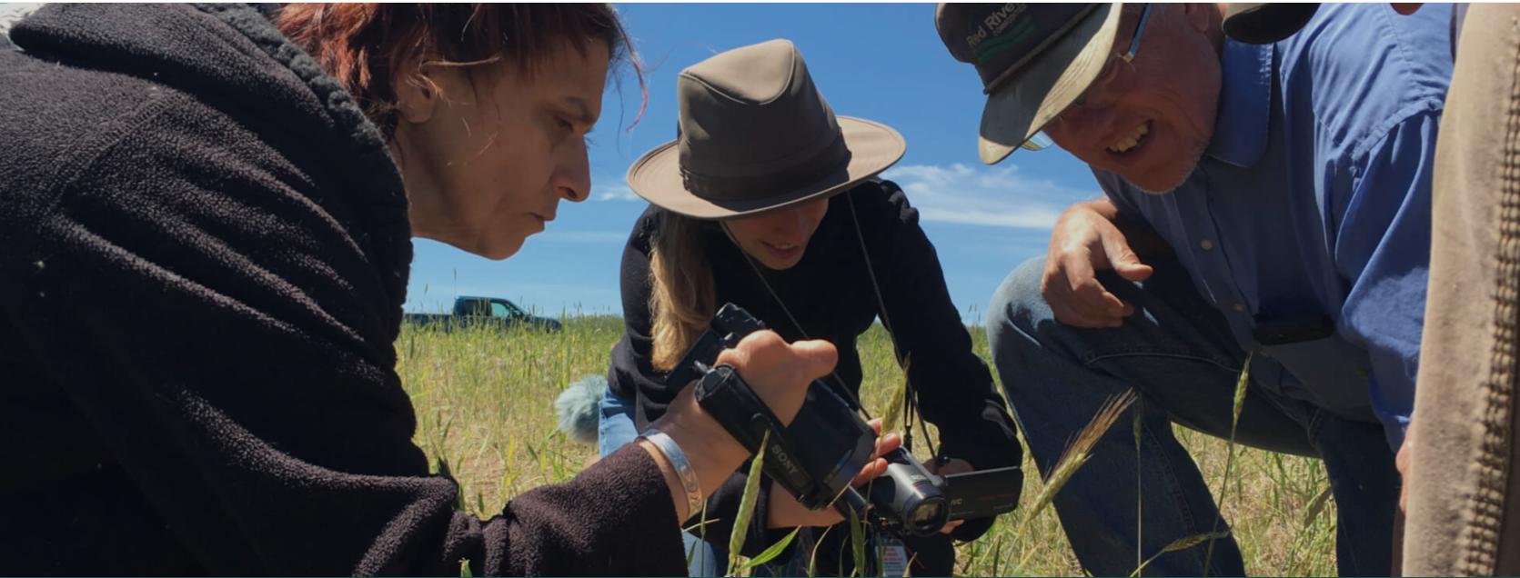 Interns doing fieldwork