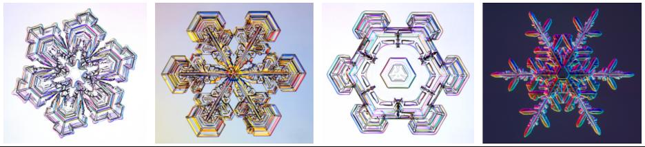 Four lab-grown snowflakes