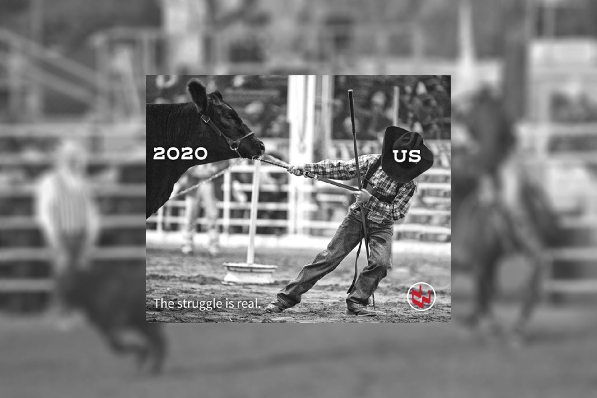 Rodeo Graphic