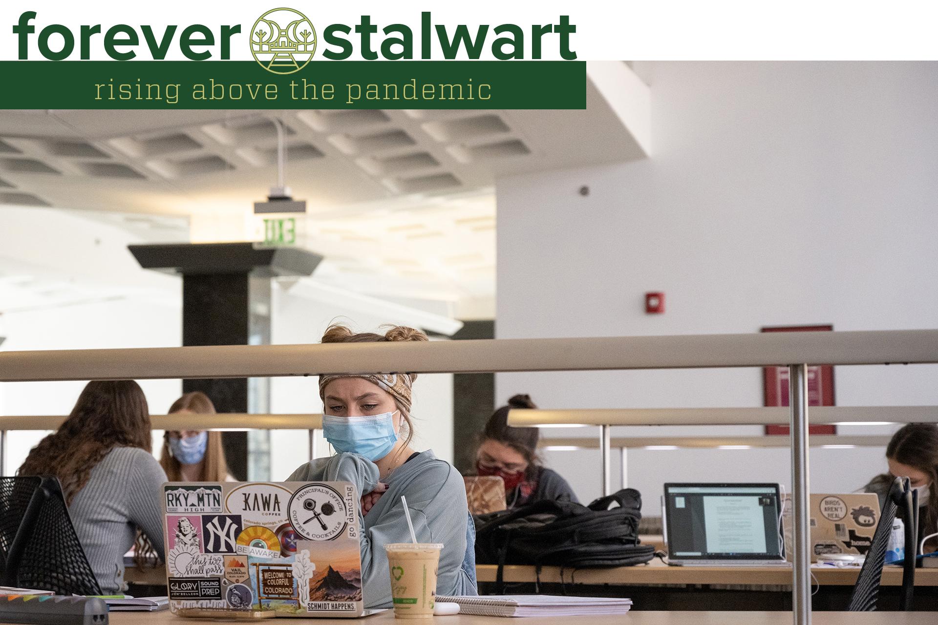Student studying at Morgan Library
