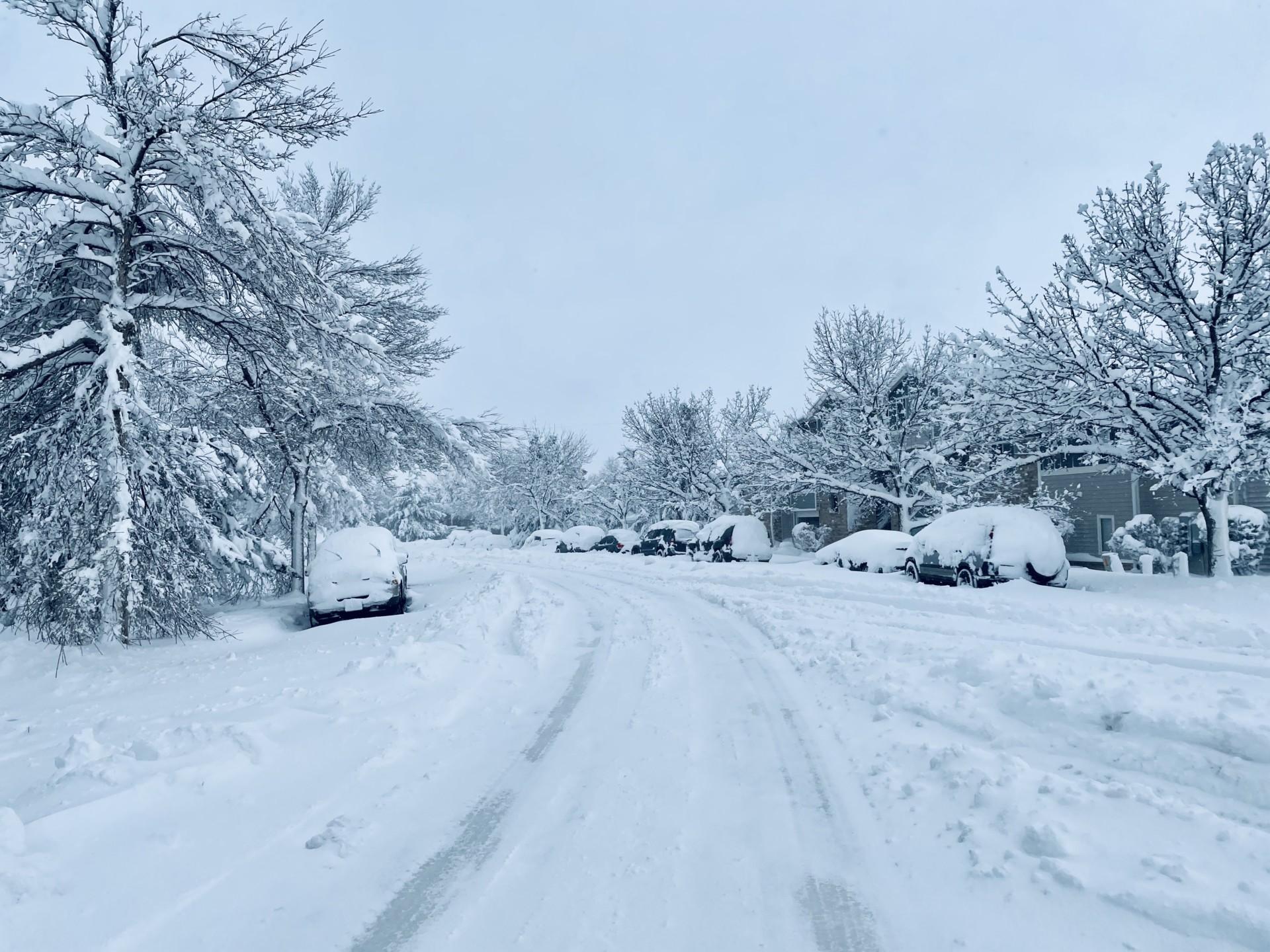 Cars snowed in
