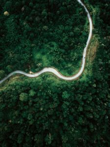 drone shot of a road through a rainforest in Malaysia