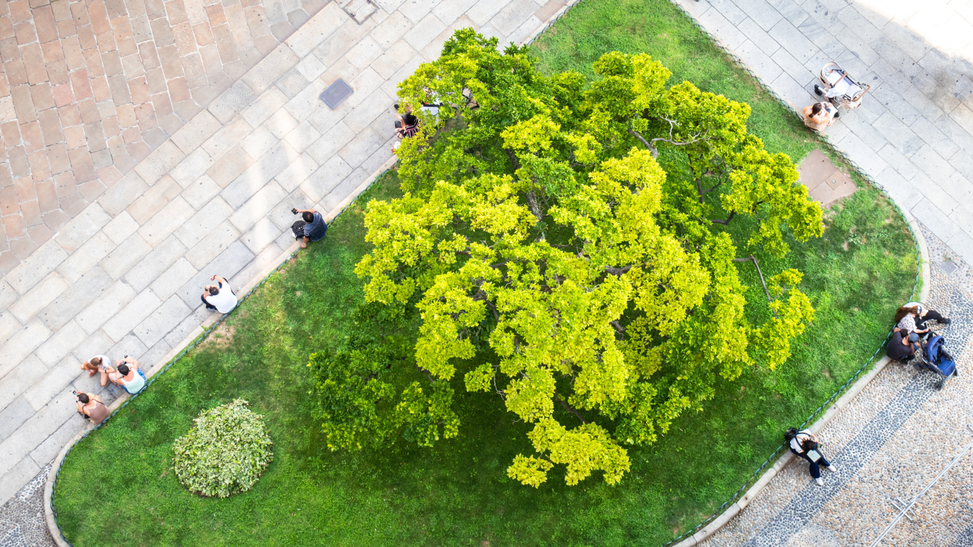photo of people from above sitting at a small city park green