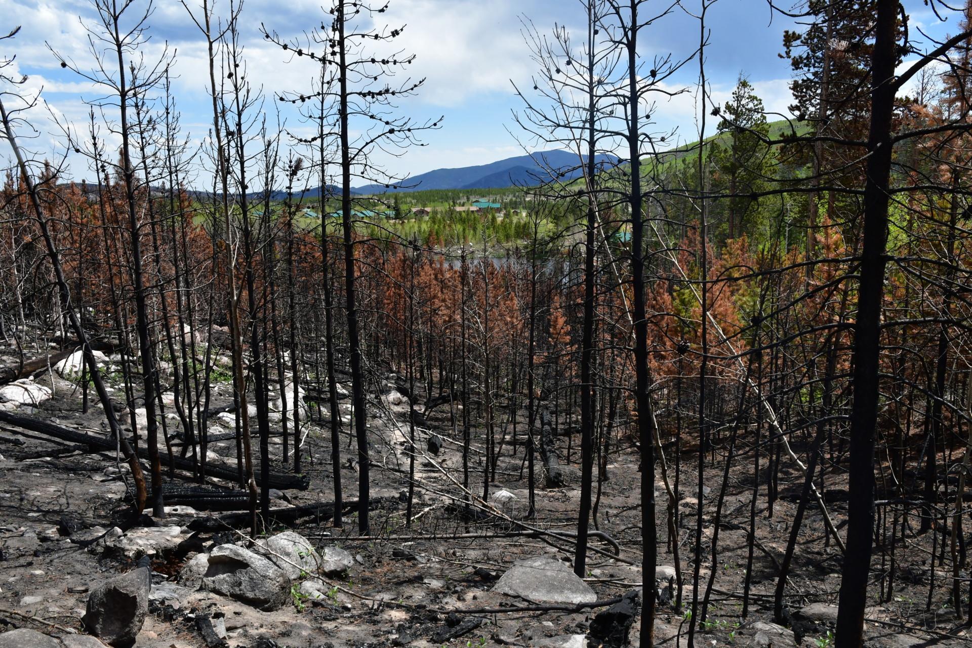 CSU's Mountain Campus with a burn scar following the Cameron Peak Fire