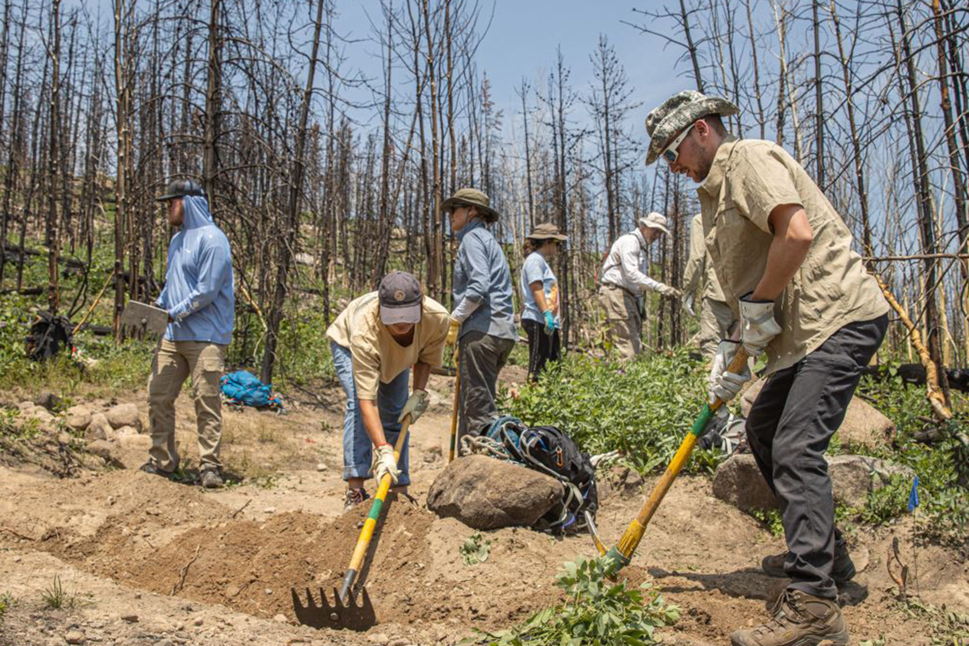 Students Participate In Fire Restoration During MCSLAW At The Mountain Campus